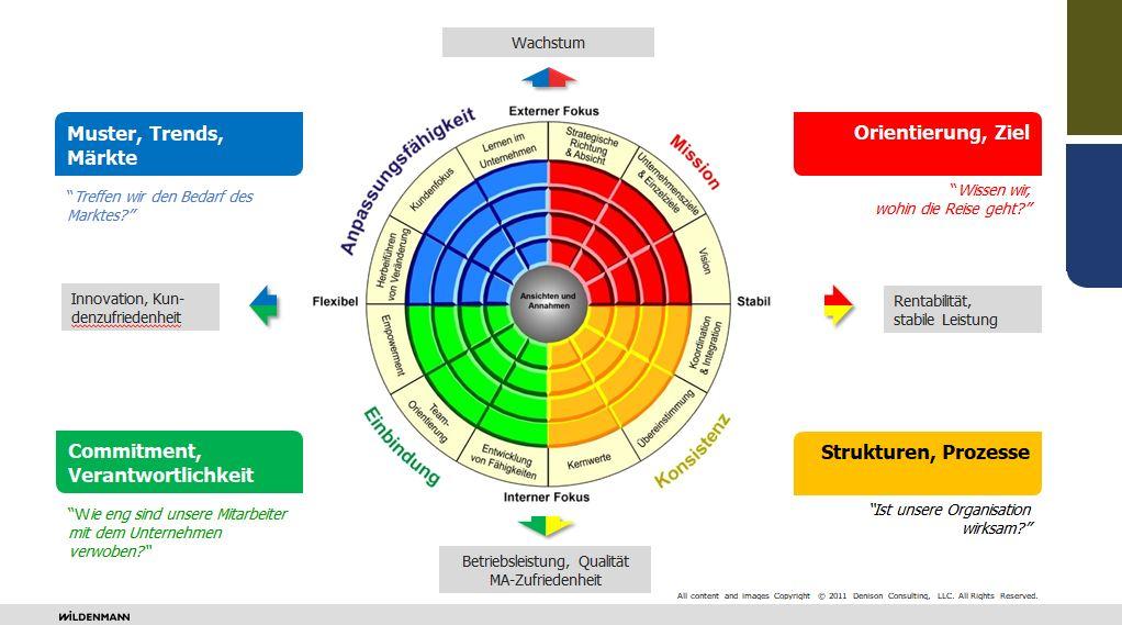 Wildenmann Consulting Denison Unternehmenskultur